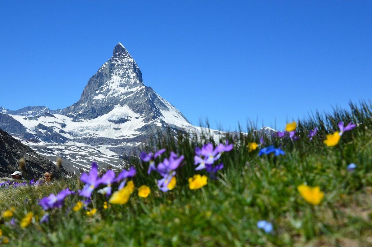 صور سويسرا